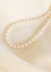 真珠のネックレスの写真素材 [FYI03043041]