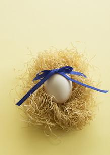 リボンを結んだ卵の写真素材 [FYI03043200]