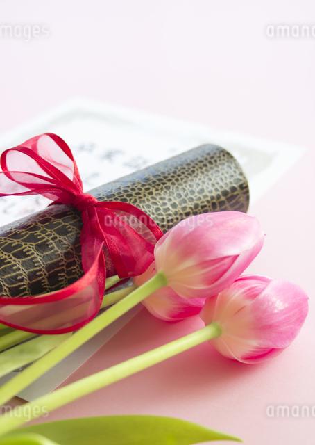 卒業証書とチューリップの写真素材 [FYI03043348]