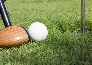 パークゴルフの写真素材 [FYI03043351]