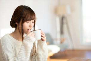 飲み物を飲む女性の写真素材 [FYI03044972]