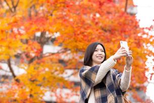 スマートフォンで紅葉の写真を撮る女性の写真素材 [FYI03045107]