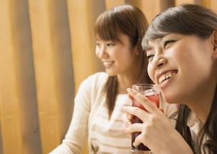 飲み会をする女性たちの写真素材 [FYI03045700]