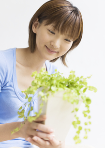 観葉植物を眺める女性の写真素材 [FYI03046585]