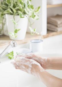 手洗いの写真素材 [FYI03046752]