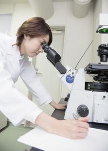 顕微鏡を覗く研究員の写真素材 [FYI03047128]