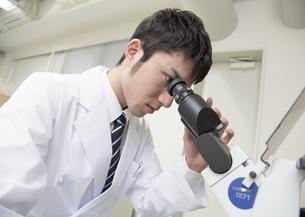 顕微鏡を覗く研究員の写真素材 [FYI03047130]