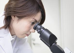 顕微鏡を覗く研究員の写真素材 [FYI03047133]