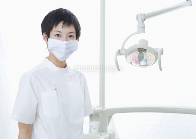 歯科衛生士の写真素材 [FYI03047150]