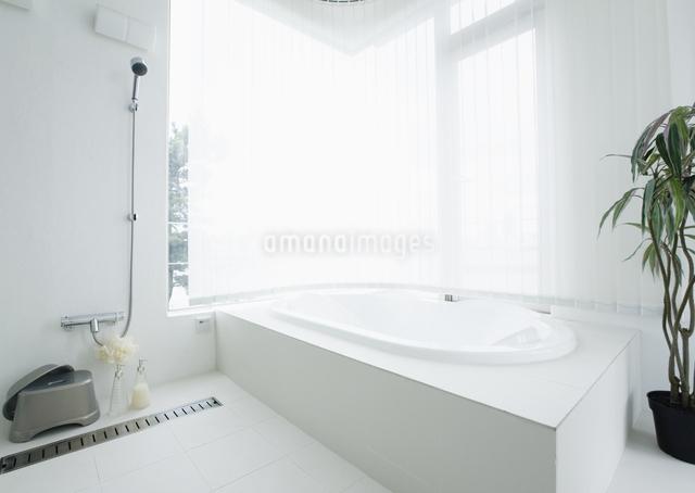 バスルームの写真素材 [FYI03047461]