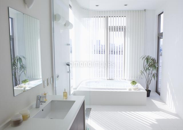 洗面所とバスルームの写真素材 [FYI03047550]