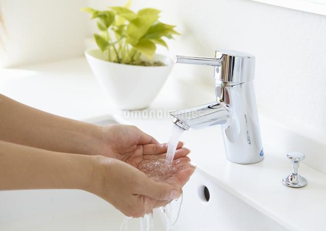 手洗いの写真素材 [FYI03048239]