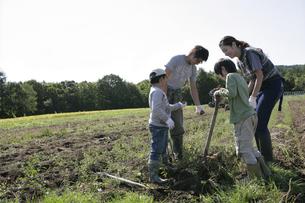 農作業をする親子の写真素材 [FYI03049680]