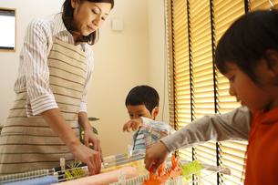 洗濯物を干す母子の写真素材 [FYI03050524]
