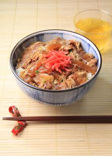 牛丼の写真素材 [FYI03050921]