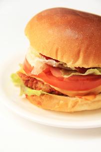 ハンバーガーの写真素材 [FYI03050930]