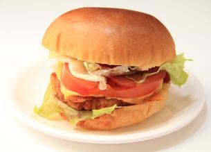 ハンバーガーの写真素材 [FYI03051061]
