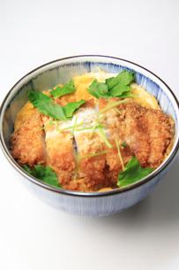 カツ丼の写真素材 [FYI03051077]