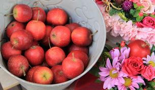 ひめりんごの写真素材 [FYI03051442]