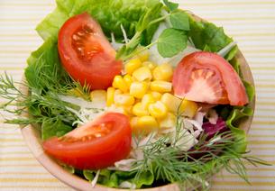 野菜サラダの写真素材 [FYI03051598]