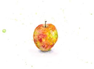 りんごのイラスト素材 [FYI03052129]