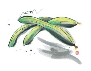 胡瓜のイラスト素材 [FYI03052273]