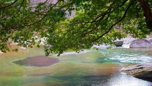 清流と緑の写真素材 [FYI03053158]