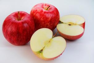 りんごの写真素材 [FYI03053257]
