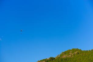 青空とパラグライダーの写真素材 [FYI03053711]