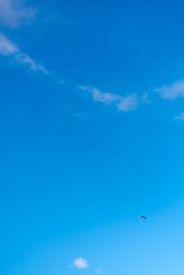 青空とパラグライダーの写真素材 [FYI03053716]