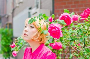 薔薇と女性の写真素材 [FYI03053794]