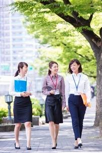 並木道を歩くビジネスウーマンの写真素材 [FYI03053799]