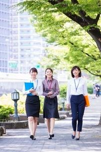 並木道を歩くビジネスウーマンの写真素材 [FYI03053910]