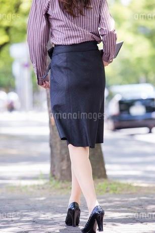 並木道を歩くビジネスウーマンの写真素材 [FYI03053913]