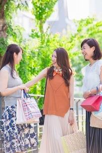 ショッピングバッグを持つ女性の写真素材 [FYI03054054]