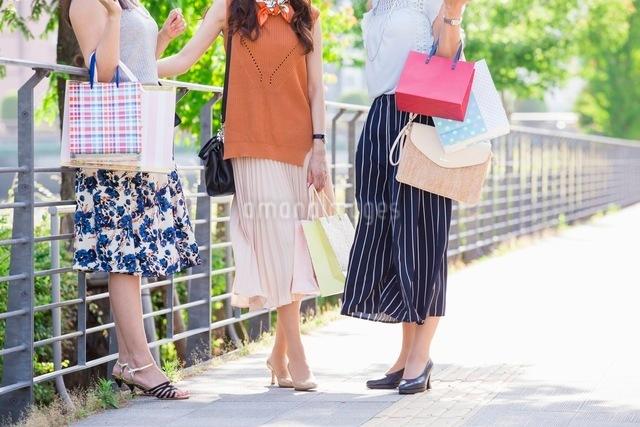 ショッピングバッグを持つ女性の写真素材 [FYI03054073]