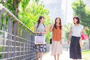 ショッピングバッグを持つ女性の写真素材 [FYI03054080]