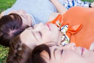 芝生に寝転ぶ女性の写真素材 [FYI03054099]