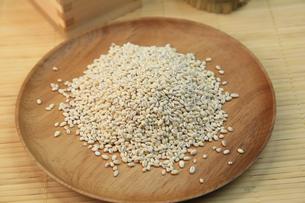 もち麦の写真素材 [FYI03054187]