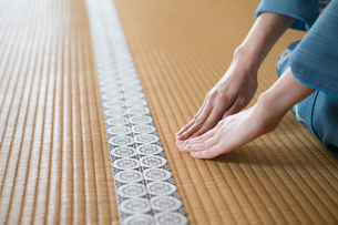 畳に手を付く着物姿の女性の写真素材 [FYI03054442]
