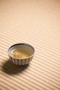 桜湯の写真素材 [FYI03054611]