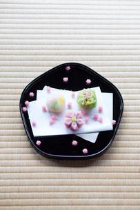 和菓子の写真素材 [FYI03054704]