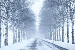 冬の北海道の写真素材 [FYI03054808]