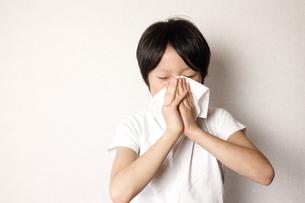 鼻をかむ子供の写真素材 [FYI03055016]