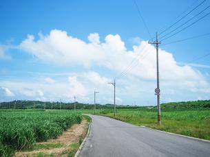 小浜島の風景の写真素材 [FYI03055213]