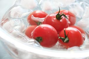 トマトの写真素材 [FYI03055306]