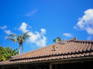 シーサーのいる屋根の写真素材 [FYI03055322]