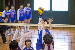 高校生バレーボール女子の写真素材 [FYI03055627]