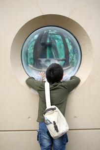 動物園の写真素材 [FYI03055746]