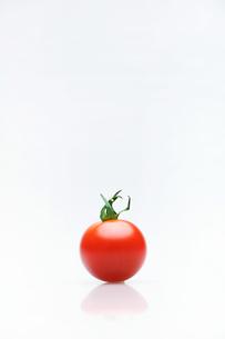 ミニトマトの写真素材 [FYI03055788]